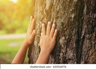 Children's hug big tree, selective soft focus, concept nature and people.
