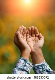 Children's open empty hands with palms up. Human hands of prayer. Sunlight in the sky