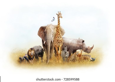 Children's themed African safari animal composite with white border