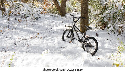 A child's bike abandoned in the snow by a tree with some colorful foliage.