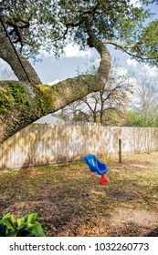 Child's Colorful Swing Hanging from Sturdy Live Oak Branch in Louisiana