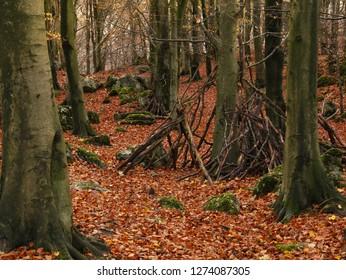 Child's den shelters wigwams in eerie autumn wood. Fall leaves wooden shelters fantasy landscape