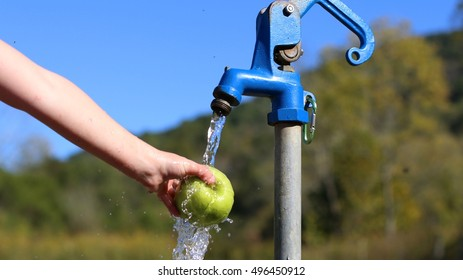 Child's Hand Holding Bright Green Granny Smith Apple Under Stream Of Cold, Fresh, Mountain Spring Water On A Farm In South West Virginia