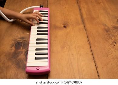 Harmonica Images, Stock Photos & Vectors | Shutterstock