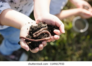 Child's hands holding a heap of dirt with earthworm version 2