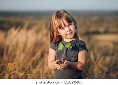 childs hands holding a small maple tree Blured background