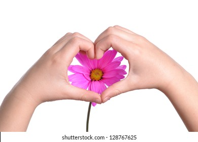 childs hands making heart shape and pink flower