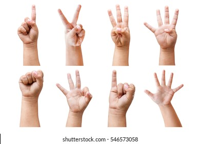 Child's hands many gesturing isolated on white background with clipping path