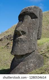 Chile, Easter Island aka Rapa Nui. Rapa Nui National Park, historic site of Rano Raraku 'the quarry'. Volcanic hillside where moai were carved. Detail of large moai face.