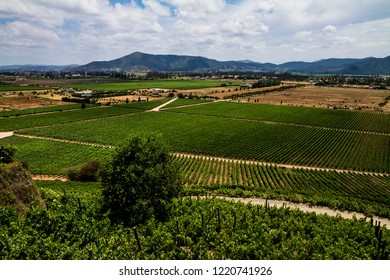 Chilean vineyard panorama taken from above and roads crossing
