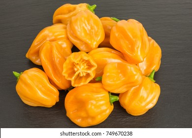 chili pepper habaneros which are very hot and rated 100,000 to 350,000 on the Scoville scale