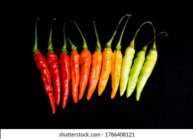 Chili peppers on a black background. Red, yellow and Green Hot Chilli peppers with isolated by black background.