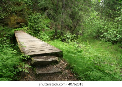 Chilkoot Trail, a historical trail from the gold mining era, Skagway, Alaska, USA