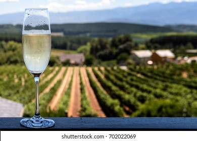 Chilled champagne glass with blurry vineyards background; focus on glass