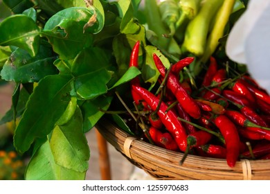 Chilli dip or chili paste of thai food with Vegetable