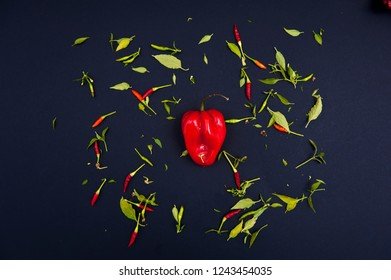 Chilli peppers and spices on the black background.