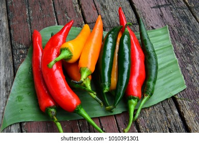 Chillies red green and yellow