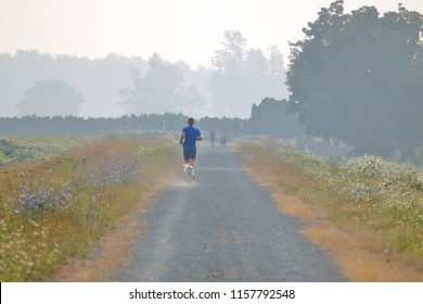 CHILLIWACK, BC/Canada - August 16, 2018: Poor air quality caused by nearby forest fires and drought doesn't deter a jogger from pursuing his daily run near Chilliwack, BC, Canada on August 16, 2018.