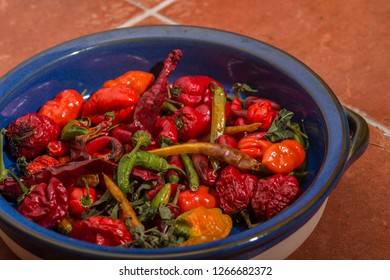 Chilly peppers - mexican style