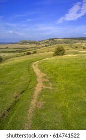 chiltern hills ridgeway path buckinghamshire england uk