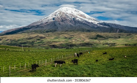 Chimborazo is the highest mountain in Ecuador. It is the highest peak near the equator.