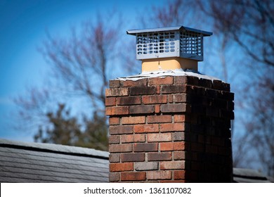 Chimney cap installed to prevent rodent entry to home/attic/building