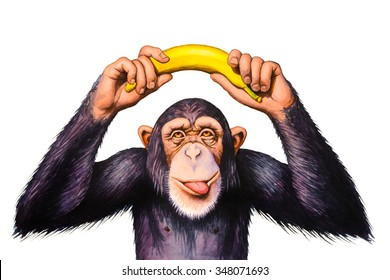 Chimpanzee holding banana hands over his head. Watercolor illustration.