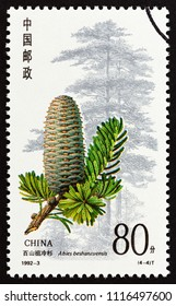 "CHINA - CIRCA 1992: A stamp printed in China from the ""Conifers"" issue shows Abies beshanzuensis, circa 1992."