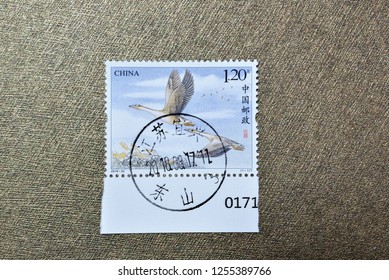 CHINA - CIRCA 2018: A stamps printed in China shows 2018-22 Wild Goose, circa 2018.