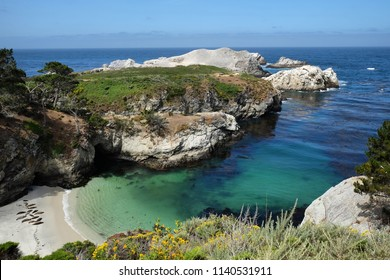 China Cove, Point Lobos State National Reserve, Carmel-by-the-Sea, California, USA