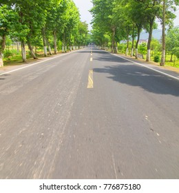 china Forest road