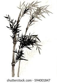 China, ink, bamboo sketch