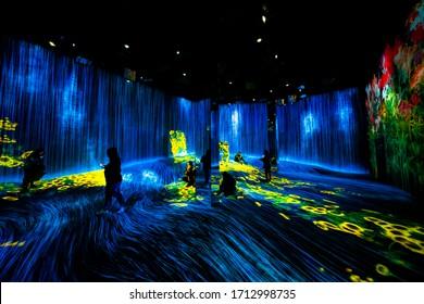 China, Shanghai - November 22, 2019: Exhibition room at Epson TeamLab Borderless, Huangpu District.