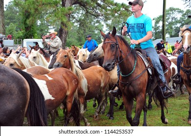 Chincoteague Island, Virginia / USA - July 25, 2018: Salt Water Cowboys herding Chincoteague ponies into a corral on Chincoteague Island after their annual swim from Assateague Island, July 25, 2018.