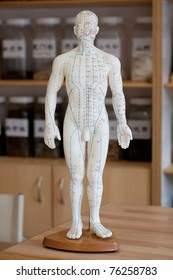 Chinese acupuncture dummy.