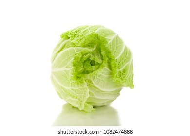 Chinese cabbage Female genitalia