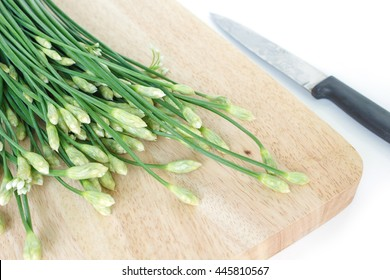chinese chive flowering onions stalk vegetable food on white background