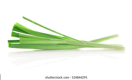 Chinese chives, Garlic chives isolated on white background.
