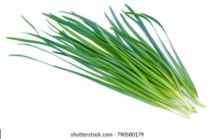 Chinese chives, Garlic chives, Kow Choi