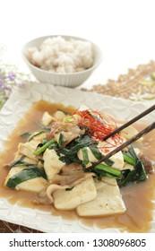 Chinese food, homemade tofu and leek stir fried and rice