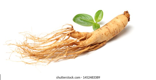 Chinese herbal medicine - ginseng
