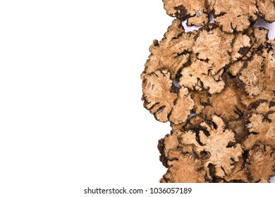 Chinese herbal medicine, sliced of dry Szechuan Lovage root (Ligusticum chuanxiong Hort), isolated on white background
