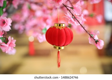 Chinese knot and sachet hanging from peach blossom