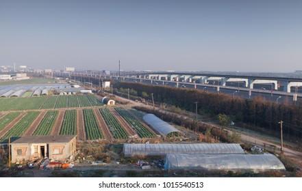 Chinese Landscape, fields near Shanghai International Airport
