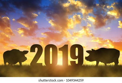 Chinese New Year 2019 concept.Silhouette of two pig at sunset.