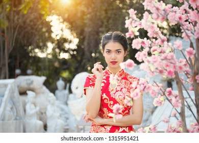 Chinese new year concept. Portrait of young attractive beautiful girl in red cheongsam, qipao dress. Sunset or sunrise time golden bokeh background.