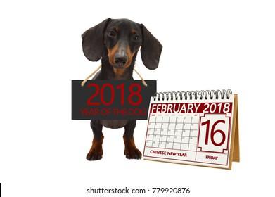 Chinese New Year February 2018 Calendar white background