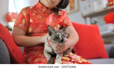 Chinese people holding her kitten carefully