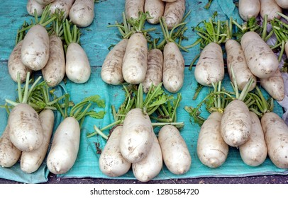 Chinese radishes or daikon for sale at a farmer market