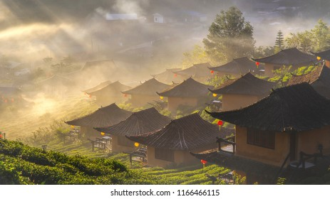 The Chinese settlement in tea fields with fog in the moring. Ban Rak Thai Village, Mae Hong Son, Thailand.
